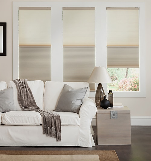 Day/Night Cordless Cellular Shade in Ivory