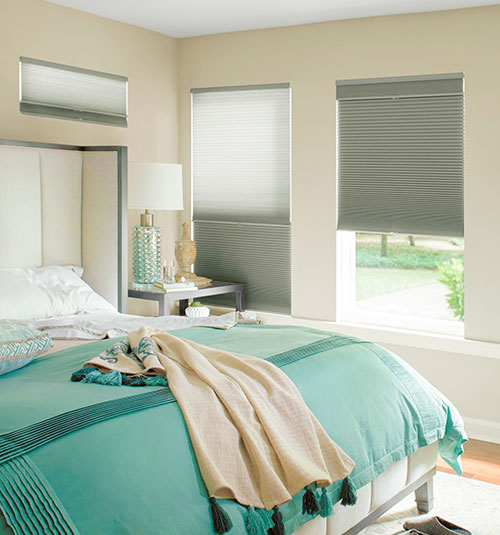 Levolor Day/Night Cellular Shades