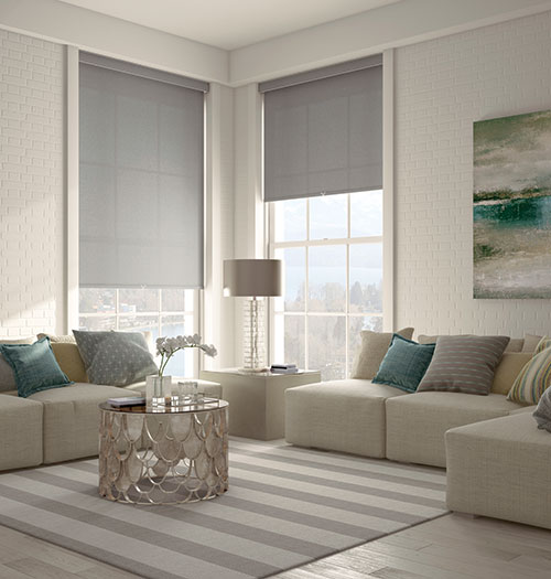 Levolor Solar Shades