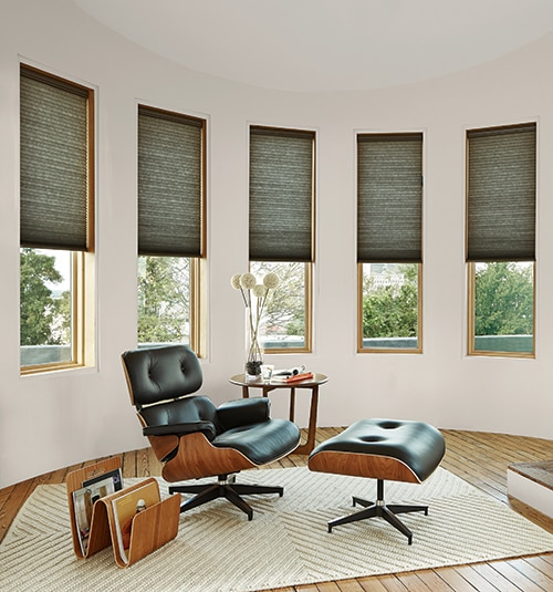 Levolor Light Filtering Cellular Shades